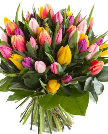 boeket tulpen