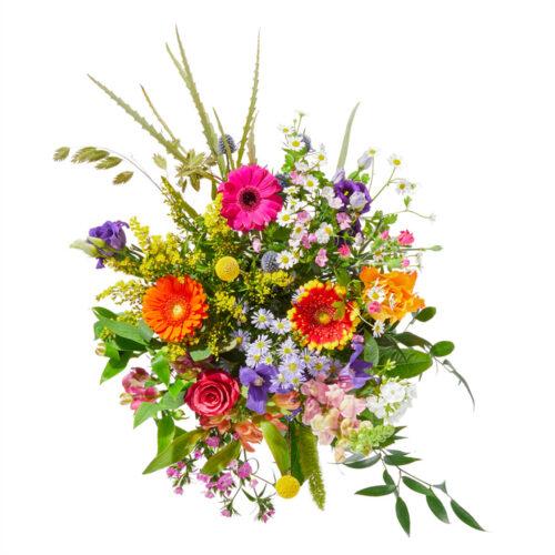 bloemen afbeeldingen