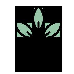 tuinplanten en kamerplanten